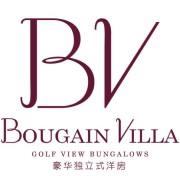 Bougain Villa